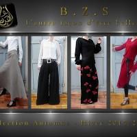 B.Z.S site
