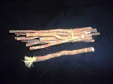 Le siwak : bon pour les dents, et pour satisfaire Allah